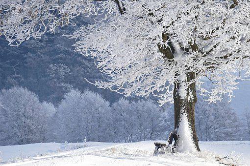ワークマン防寒着最強2019安いし暖かい?アルミ裏地の評価評判を紹介