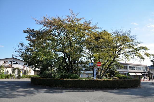 耳をすませば映画実写版のロケ地は聖蹟桜ヶ丘のどこ?ラストシーンの場所も地図付きで紹介