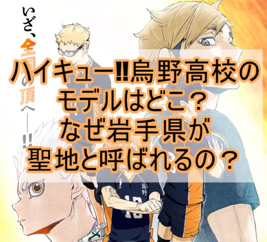 ハイキュー烏野高校のモデルは岩手県のどこ高校?アニメに登場する聖地を紹介!